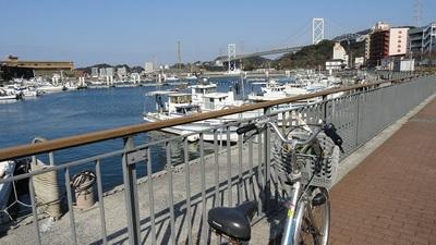 20140223 5サイクリング2.JPG