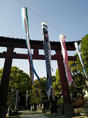20140504 平塚八幡宮.JPG