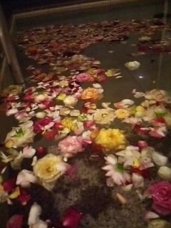 20140913 バラ風呂.JPG