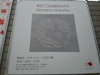 20141021 ナターシャ・マズルカ展.JPG