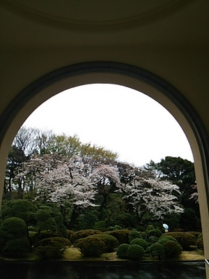 20150329 桜@都庭園美.JPG