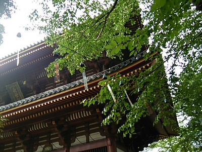 20150719 池上本門寺3.JPG