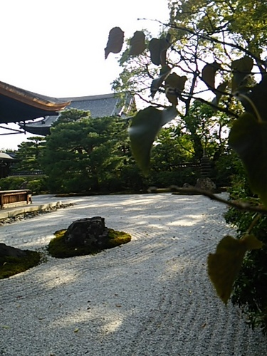 20151029 京都5建仁寺14.JPG