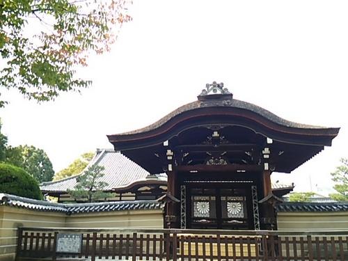 20151030 京都14東寺8.JPG