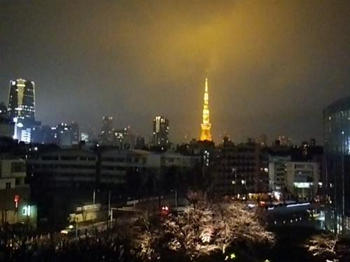 20170331 桜夜景from六本木ヒルズ.JPG