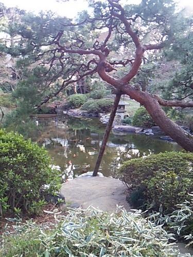 20170402 都庭園美庭園1.JPG