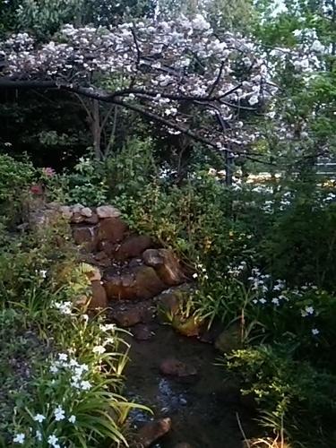 20170415 東京ガーデンテラス紀尾井町6.JPG