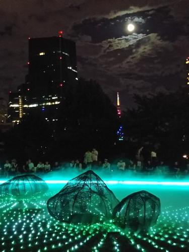 20180825 光と霧のデジタルアート庭園4.jpg