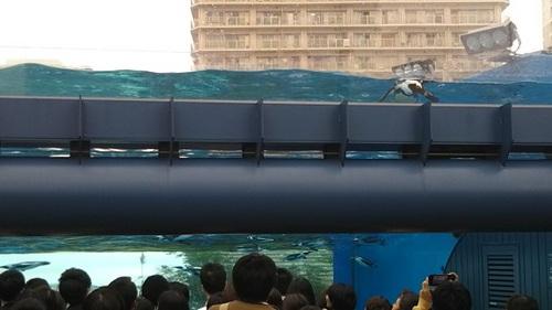 20180927 サンシャイン水族館16.JPG