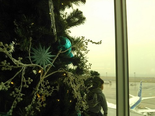20181222 Xmas@羽田空港第2ターミナル5.jpg